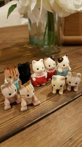 9 Calico Critter kittens