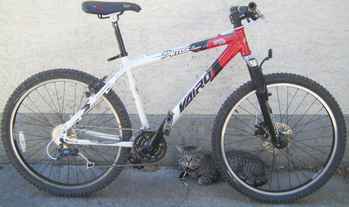 AMS - Vairo 27 spd. with 26 inch tires