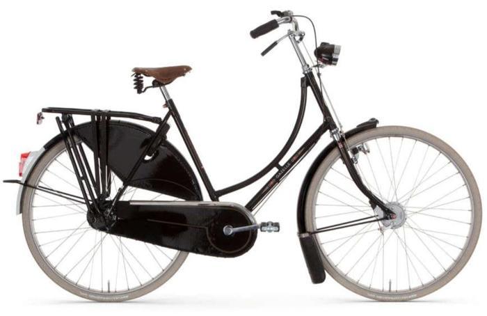 Dutch Style Gazelle Tour Populair ? save $700!