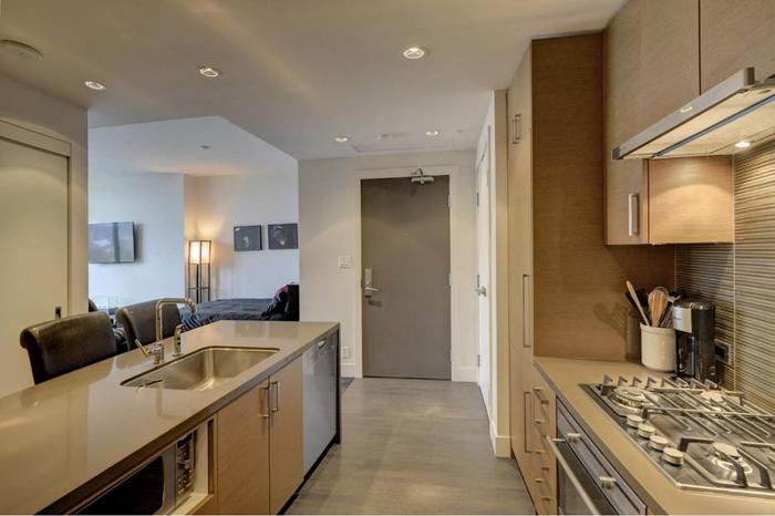 High end studio condo for rent