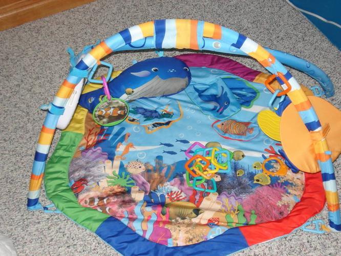 Infant Floor Playmat/Gym