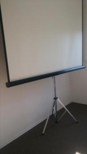 VERY LARGE PROJECTOR SCREEN FOR OUT DOOR FUN/MESURES 7 FT WIDE/7 FT TALL