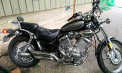 1995 Yamaha Virago 535cc Great shape never dropped 18173 kms cheap insurance fun bike email for more info.