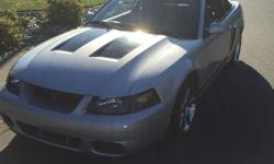 Make Ford Model Mustang Year 2004 Colour Silver kms 107000 Trans Manual 2004 SVT Mustang Cobra Convertible, Factory Supercharger (terminator), 6 speed manual, limited edition, mostly stock with a few minor changes including CAI from WMS, Magnaflow cat