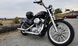 Make Harley Davidson Model Sportster Year 2009 kms 15000 2009 Sportster 883L for sale. New engine and gear oil, clutch cable, brake pads and battery. Needs nothing at 15xxx km. May consider a trade for a 4x4 pickup with canopy. 5500 firm. Posted with