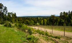 # Bath 1 Sq Ft 1972 MLS 410024 # Bed 3 Gaze out at the stunning views from the building site overlooking this 25 acre property with vineyard . Your view includes Yellow Point, the Gulf Islands and the North Shore Mountains. The lower section of the