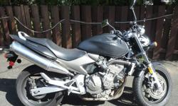 2003 HONDA 599 NAKED/STANDARD BIKE. 52000KM. HONDA QUALITY, ENGINE RUNS GREAT. MOSTLY HIGHWAY DRIVEN. TIRES AND BRAKES HAVE LOTS OF LIFE. SUMMER IS HERE, TIME TO RIDE. NEED MONEY FOR OTHER PROJECTS. INSURED. GREAT BIKE, SUPER COMFORTABLE TO RIDE LONG