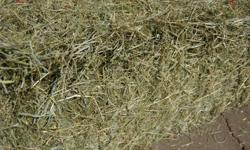 32 bales of 2015 local 2nd cut. Sale price of $10 per bale. We can help you load if needed. Saanich. 250-360-7589
