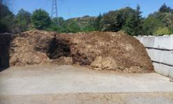 """if you are looking for HORSE MANURE for your gardens PLEASE CONTACT FARM OWNER VIA EMAIL as we have a """"magnificent mountain of horse manure"""" which is easy to get at in our hopper and ready to go any day of the week. Farm is located close to Interurban"""