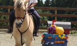 """***Our popular summer camps fill up very quickly, but a few spaces have just opened up! *** Aug 8th-12th: 1 space available, Aug 15th-19th: 2 spaces available. """"CTRA"""" has been providing safe, exciting, and educational riding camps for the children of the"""