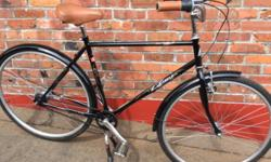 "Asama Euro 7-speed bike 21"" inch commuter cruiser."