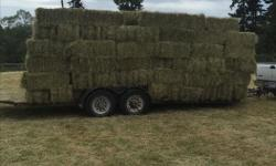 Bale wagon broke and now I have 175 bales on my trailer. Will deliver locally the next couple days or it will be stacked in the barn. Also have 400 bales in the barn with more coming this week.