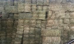There is only around 1000 bales of hay left for the year. In the barn ready to be hauled away. Come get it before its all gone.