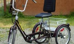 Near new, in perfect condition. The semi recumbent position of the Comfort trike provides a lower center of gravity for improved stability. The trike has an extra large seat pad together with a large backrest and a long frame and special handlebars. It