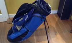 Callaway golf bag, in good shape. Thanks