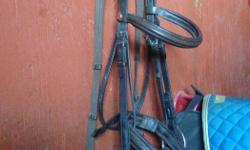 """Dark brown English bridle with webbed reins, padded noseband and flash attachment. Good condition. $20 OBO 5.5"""" (I think!) D ring single jointed snaffle available as well for $5"""