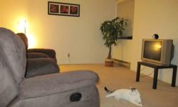 1 room is available in a bright, clean two-bedroom apartment, located on the 9th floor of a high-rise building. Looking for a responsible, clean and CAT-FRIENDLY roommate . -- Great location. 5 minutes walking distance to Lougheed Skytrain Station. 110