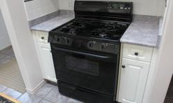 Magic Chef gas range, black w/ matching range hood. Excellent condition. Just didn't go with the Reno