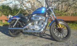 Custom 883 Sportster 31,000 km Mint condition Vance & Hines pipes Detachable shield Saddlebags Extra seat and stock pipes and much more 7200 OBO 250 508 3867