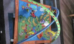 I have an infant playmat for sale. Only used a couple times in a smoke free home. Outgrew it and needing to make space. Asking 20$ OBO