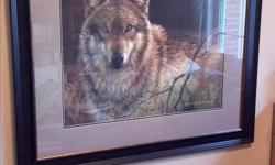 "Handsome print of wolf by Johnson-Godsy, very nicely framed. Large size, measures 41"" wide x 35"" high."