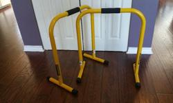Official Lebert Equalizer Bars. Great for adding different movements to your home workout. Comes with an instructional Dvd that shows you all the different exercises you can do, or check out YouTube for tons of ideas.