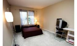 Furnished Master Suite in 2 bedroom apartment for rent in Coquitlam/Burnaby area, close to Skytrain (Braid or Lougheed) and also bus stop is right in front of the street. The nice thing about this area is the grocery stores, amenities (bowling,