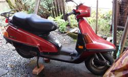 I restore vintage scooters ( 80s mostly) to some of us old guys, that might not be vintage. I currently have seven scooters in a one scooter shop in Duncan. Help!!! I need the room. Drop by and have a look, you won't be disappointed. There is one here for