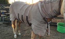 Rambo Protector fly sheet for sale, size 72. Used lightly, front Velcro ripping a little, but still in good shape.