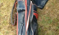 Clubs are in good condition, bag is a little old but still works well.