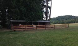 Availability for three or four horses self board. ~1/3 acre (1200 m^2) paddock and a 1 acre (4000 m^2) private turn out for the horses year round. $675 for the whole barn with three or fewer horses, or $800 for four. The barn has three stalls, hay storage