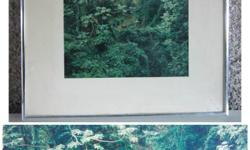 Cow in the forest Photograph under glass in a silver gallery frame $15.00 14.5 x 11.5 inches From a non smoking home FCFS with appointment Cross posted Delivery negotiable Located in Nanaimo https://www.facebook.com/Nanaimo.Rags