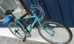 Older model TREK brand, adult mountain bike from Sausalito, California. Loved and stored but hardly used. Very good condition but needs new tires. Has Shimano Disraeli gearshift, gel seat, bike pump, extra tube, helmet, bottle holder & rear rack.