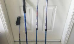 One pair and two individual walking sticks. $20 for all 4. The individual ones can be set for different heights.