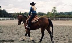 We are offering western riding lessons from beginner to advanced. We have some excellent quality horses that are trained in western pleasure and reining. Also have lots of trails to ride on after lessons Call or text for a quick response Our farm is
